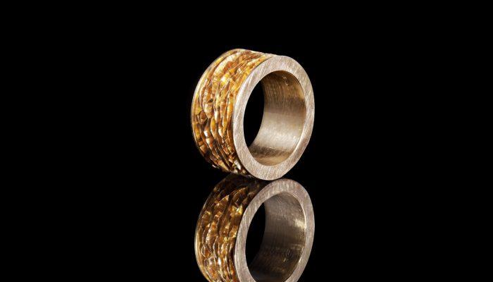 Gouden ring met lamellen